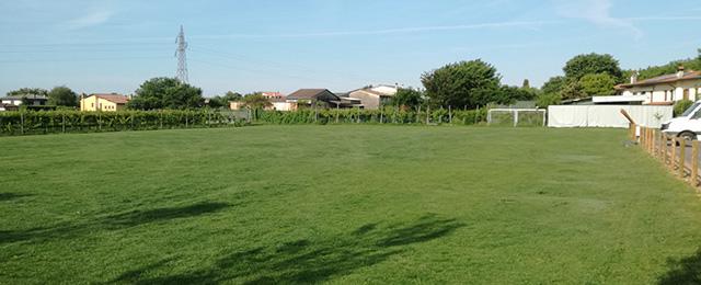 immagine progetto di semina e irrigazione prato