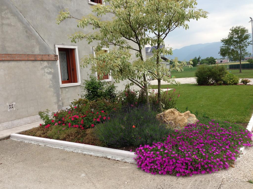 progetto giardino con aiuole fiorite verde idea