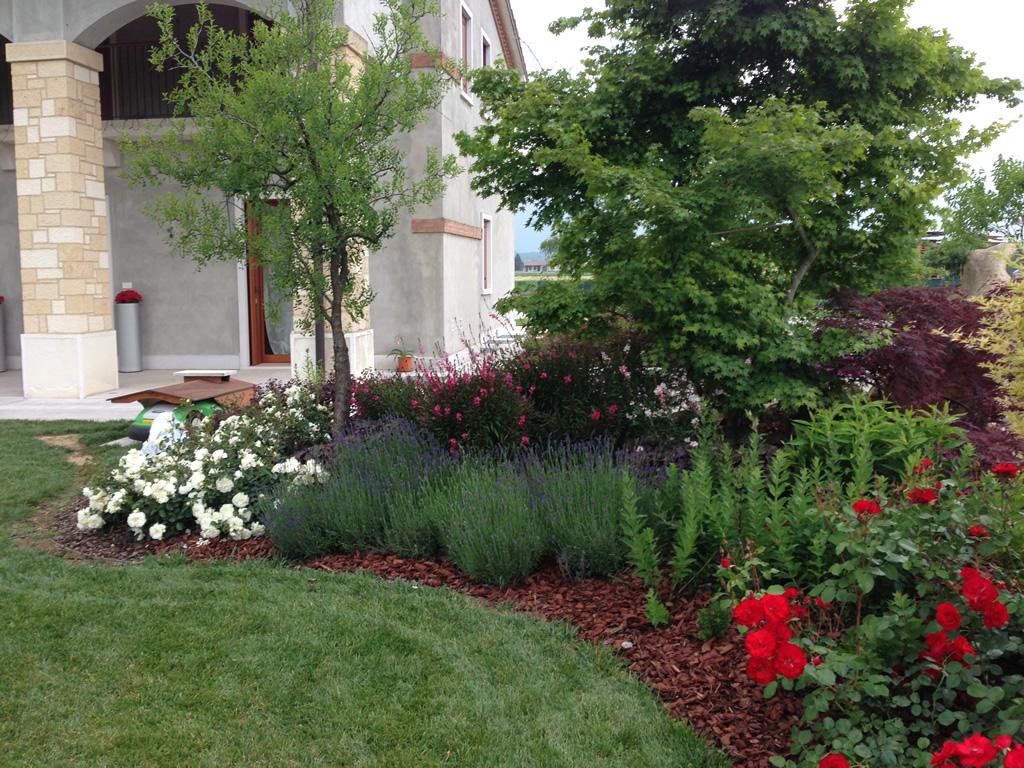 Progetto giardino con aiuole fiorite verde idea for Piccoli giardini ornamentali
