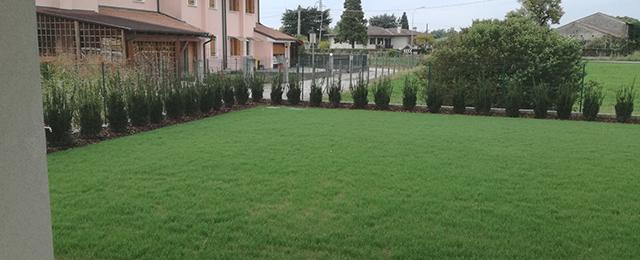 Realizzazione giardino con irrigazione, siepe di Taxus e semina