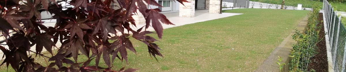 Giardino con muretta di contenimento in tufo e semina a Fonte (TV)