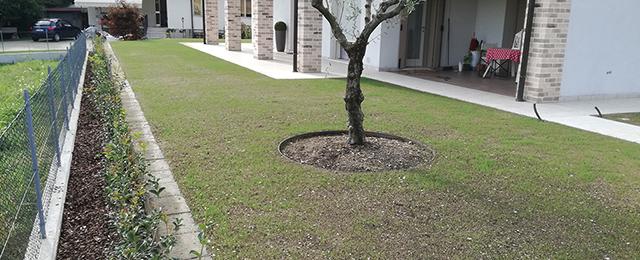 Realizzazione giardini privati in provincia di treviso for Realizzazione giardini privati
