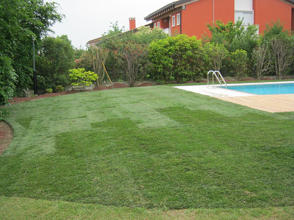 Giardini con piscine free vendi villetta con giardino e for Piscina in un giardino piccolo