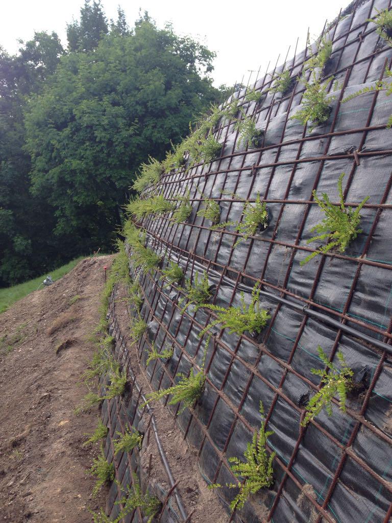 immagine progetto giardino con terre armate ad Asolo