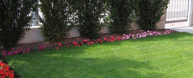 Progetto giardino fiorito geometrico verde idea for Realizzazione giardini privati