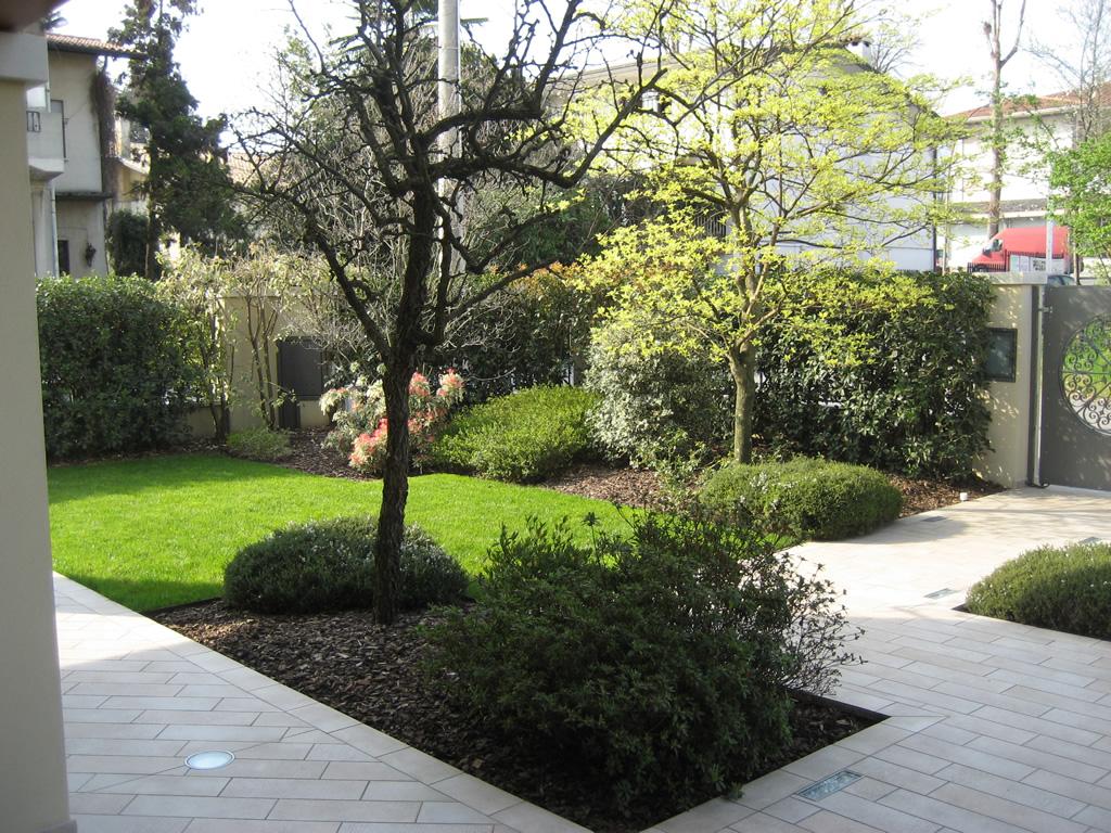 progetto giardino in inverno verde idea