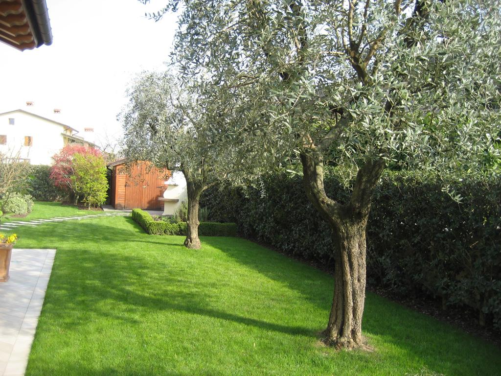 immagine progetto giardino in inverno