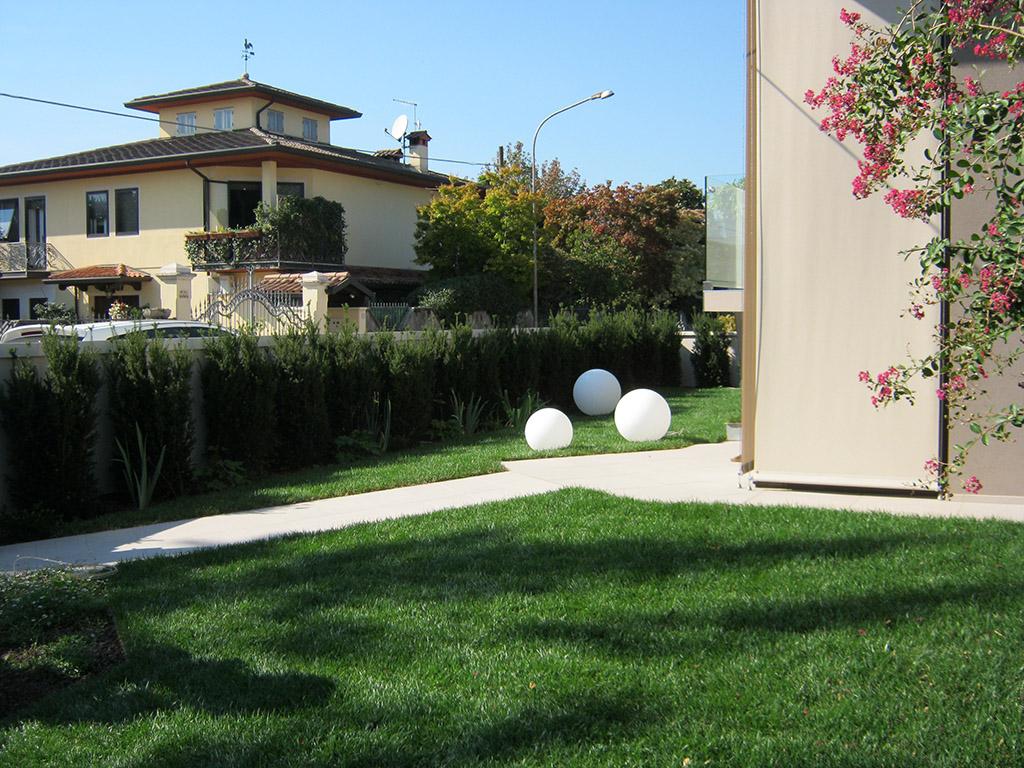 immagine progetto giardino privato con siepe di tasso, erbacee perenni e prato a rotoli a Mussolente
