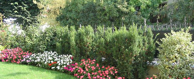 Progetto piccolo giardino progetto piccolo giardino con - Progetto giardino piccolo ...