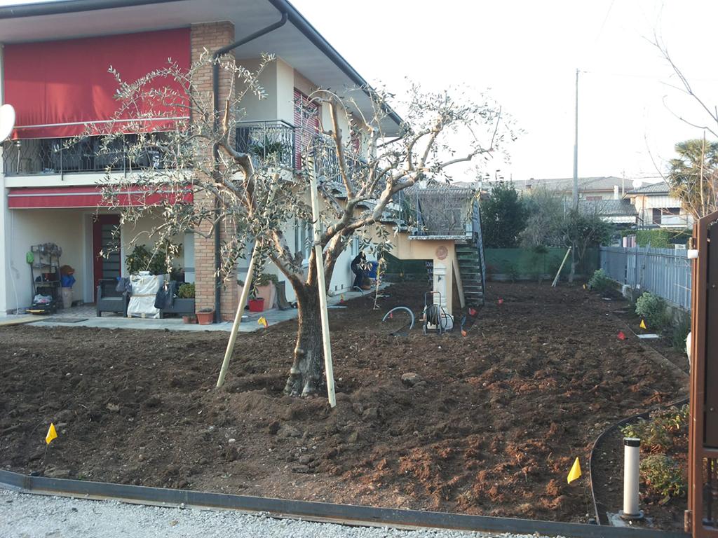 realizzazione giardino con semina e area carrabile foto 4