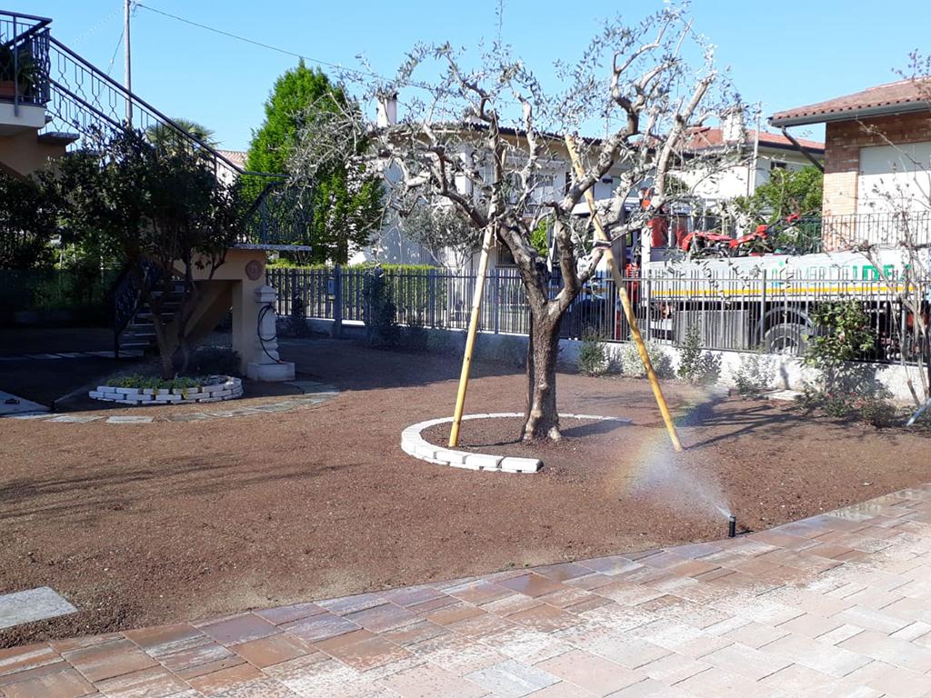 realizzazione giardino con semina e area carrabile foto 5