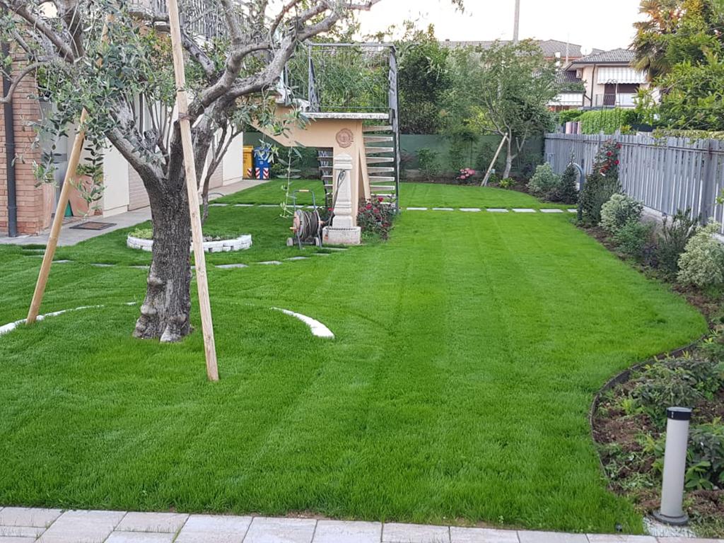 realizzazione giardino con semina e area carrabile foto 7