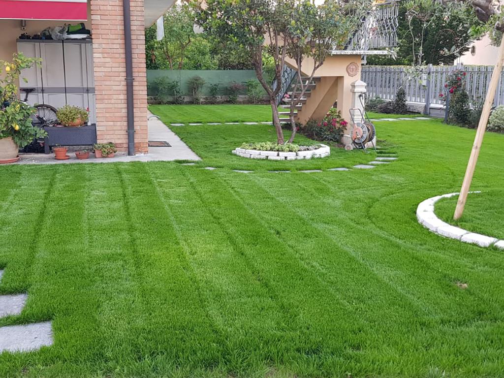 realizzazione giardino con semina e area carrabile foto 8