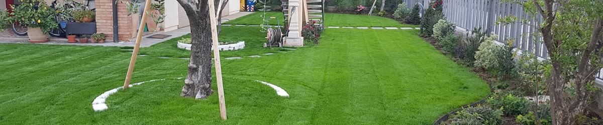 foto realizzazione giardino con semina e area carrabile a Montebelluna