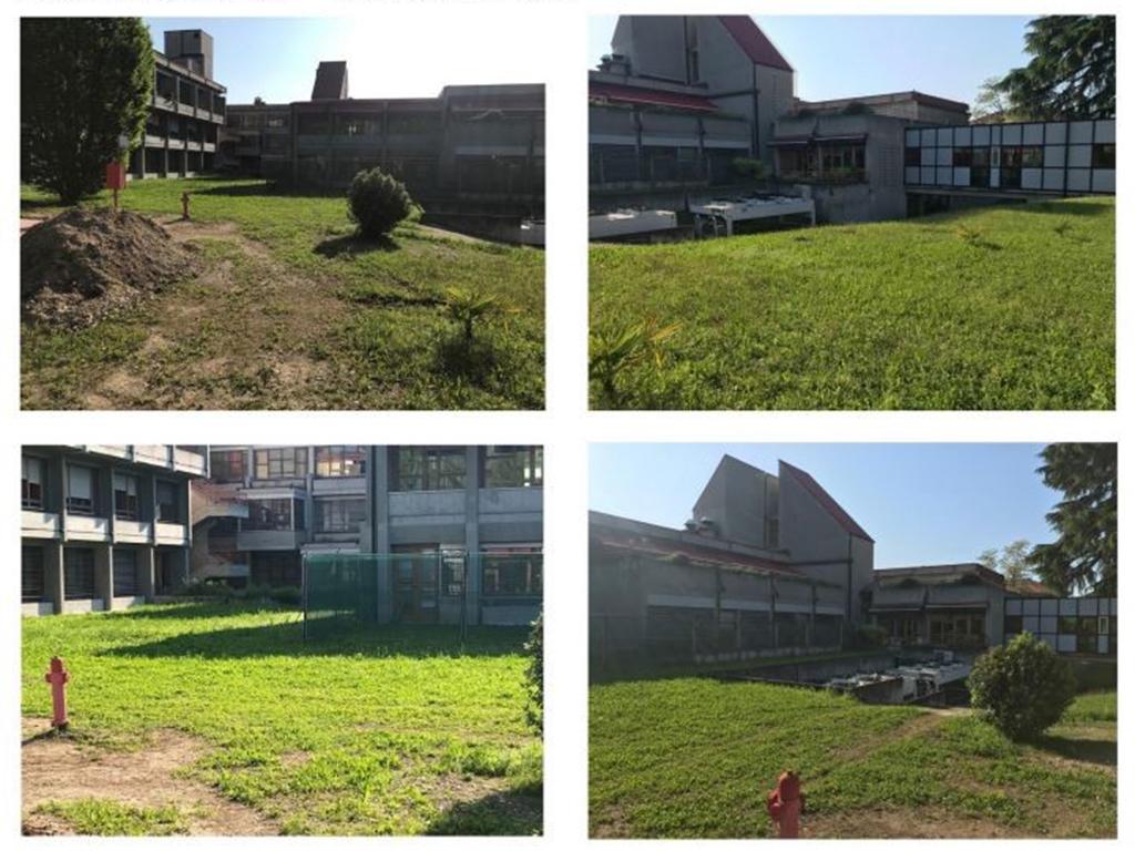 realizzazione giardino sensoriale a Castelfranco Veneto foto 1