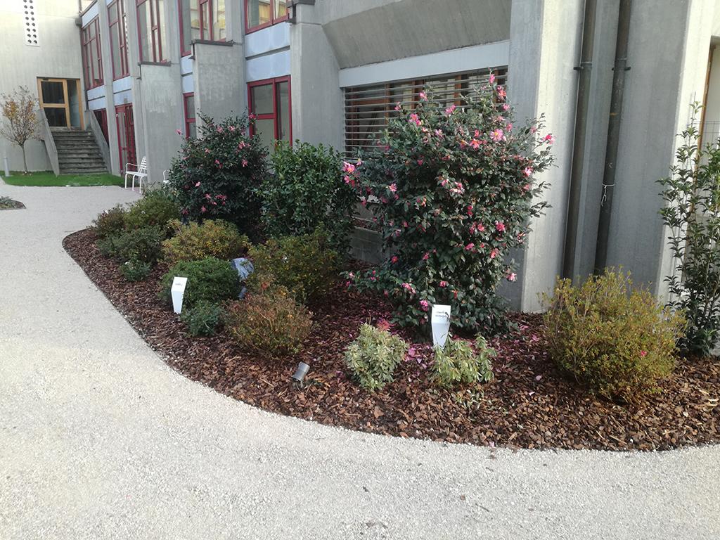 realizzazione giardino sensoriale a Castelfranco Veneto foto 13