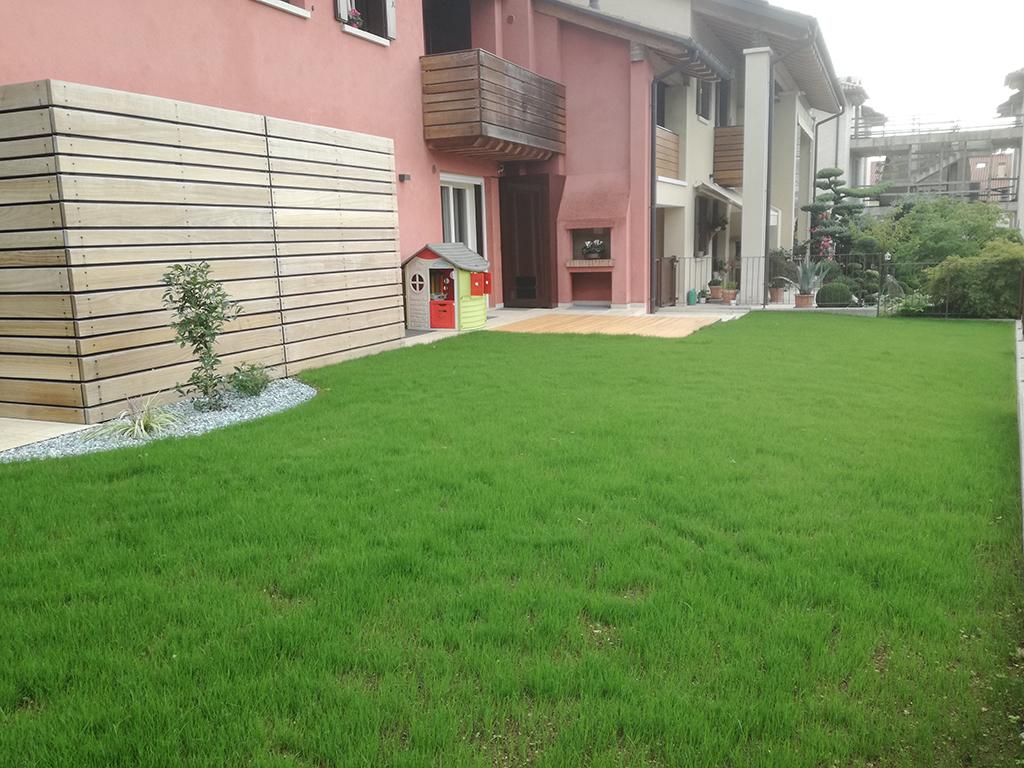 realizzazione giardino con prato a semina ad Asolo foto 3