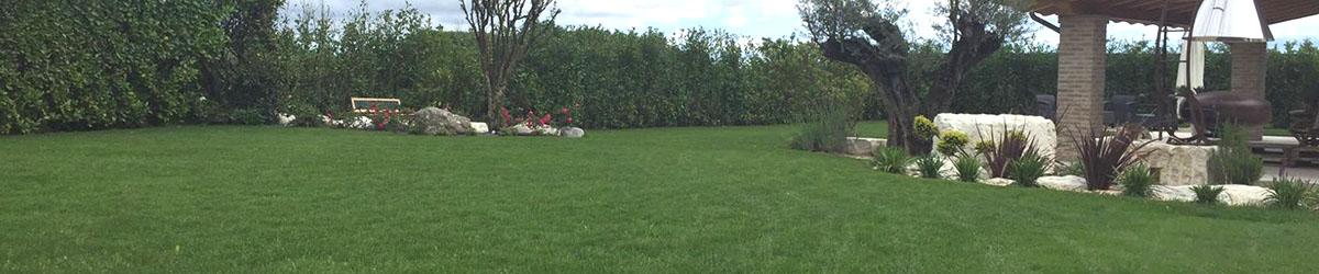 immagine di manutenzione del giardino e del prato