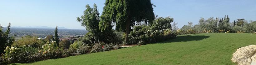 realizzazione giardino privato con prato e alberi fioriti