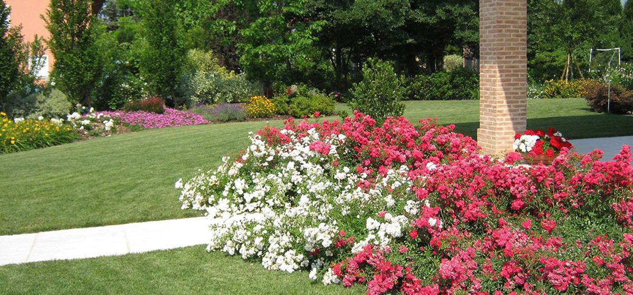immagine progetto giardino privato con prato e aiuole